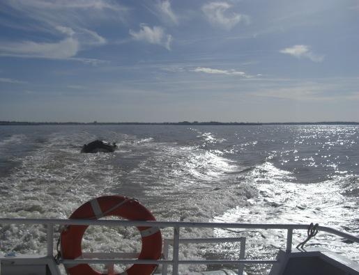 Boat trip to Phare de Cordouan, Royan