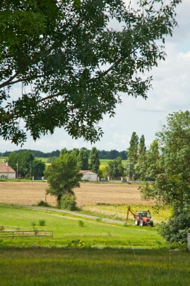 Patio view - photo courtesy of framedimage.co.uk