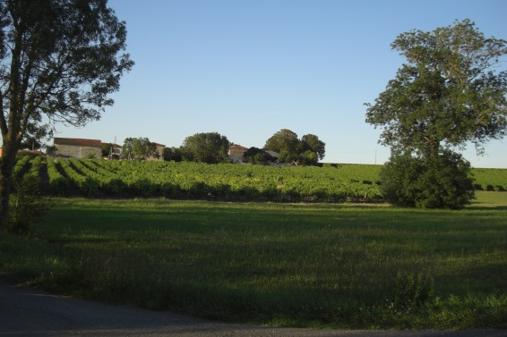 Distance view of property